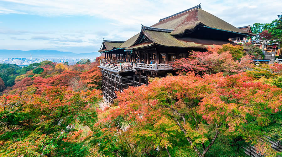 посадить хаконе япония фото пробыли